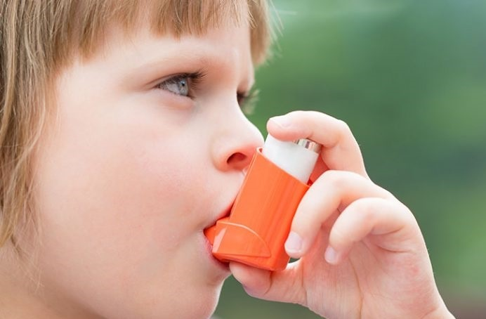 درمان آسم با گانودرما
