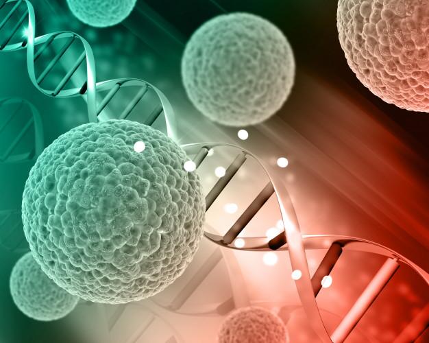 درمان سرطان با گانودرما