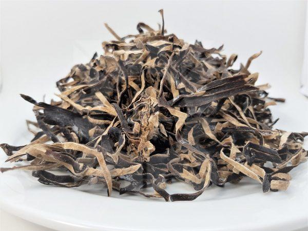 قارچ سیاه